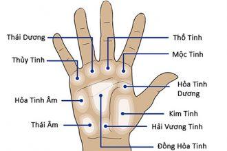 Các gò trên bàn tay nói gì về bạn? ...