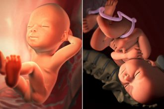 Từng tháng mang bầu, thai nhi sợ nhất điều gì? ...