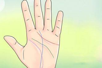 Dấu hiệu trên bàn tay cho thấy thành công trong ...