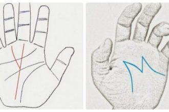 Xòe tay ra mà có những đường chỉ tay như ...