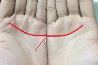 Hiếm khi nào 2 chỉ tay này liền nhau, nếu ...