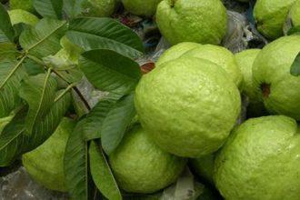 10 loại trái cây NÊN và KHÔNG NÊN bỏ hạt ...